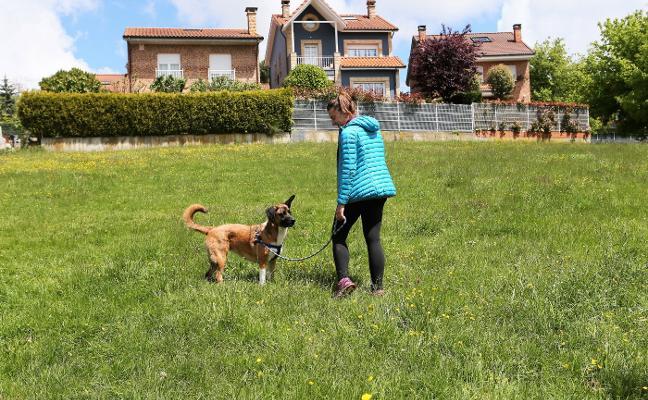 Piden paralizar el parque canino de La Rienda por fallos en la tramitación