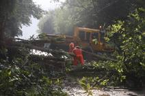 Dos argayos cortan sendas vías en Cabrales y Grado en una jornada marcada por la lluvia