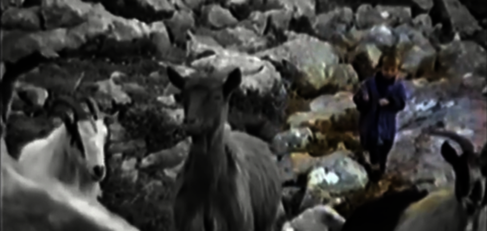 Cuando el niño Luka Modric cuidaba cabras en una montaña llena de lobos