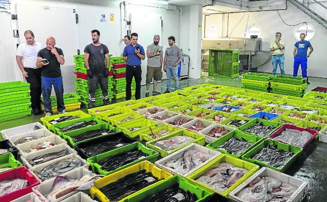 Las cofradías baten récords de capturas y rozan los cinco millones de euros