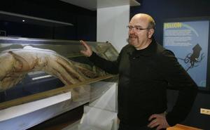 Luis Laria no estará al frente del futuro Museo del Calamar Gigante de Luarca