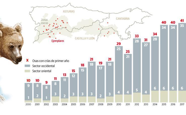 Población de oso pardo en la Cordillera Cantábrica