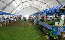 La Feria Ecológica FAEPA comienza el 10 de agosto
