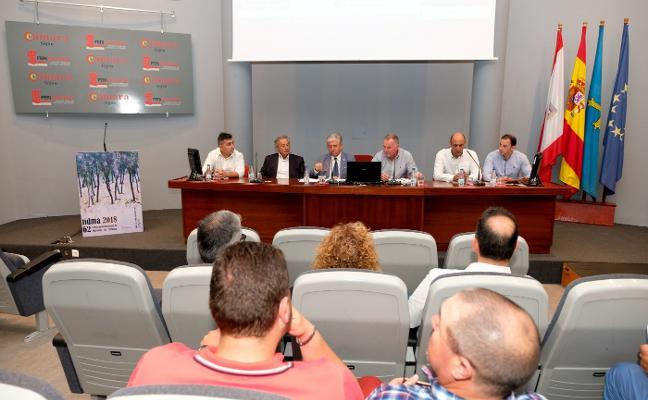 «Solo la unión nos salvará de la competencia del producto 'low-cost'»