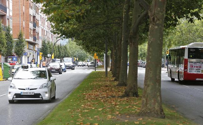 Emulsa recurre a un contrato externo para podar árboles en cuatro avenidas