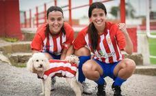«Mi casa es el Sporting, no me iría a ningún otro equipo»