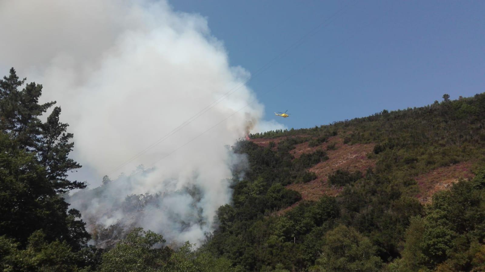 Lucha contra un incendio forestal en Navelgas