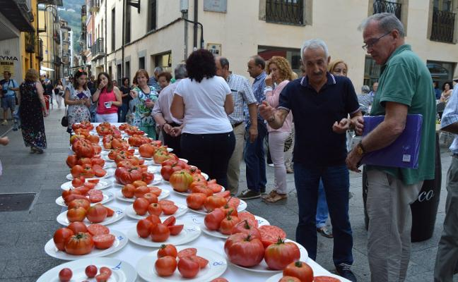 El tomate de Cangas se abre a Asturias