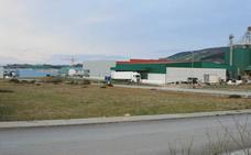 El Ayuntamiento de Tineo subasta ocho parcelas en el polígono industrial de La Curiscada