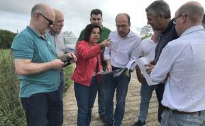 El Principado invierte más de 160.000 euros en el monte de salense para crear más pastos