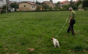 El equipo de gobierno de Siero renuncia al parque canino en La Rienda