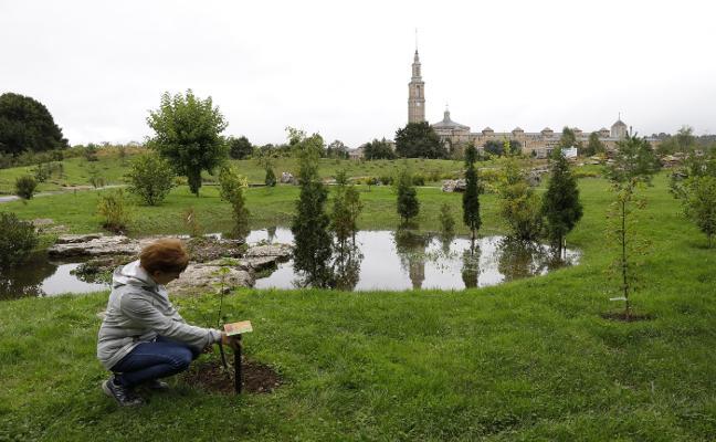 El Botánico crece con el nuevo bioma boreal y el laberinto vegetal