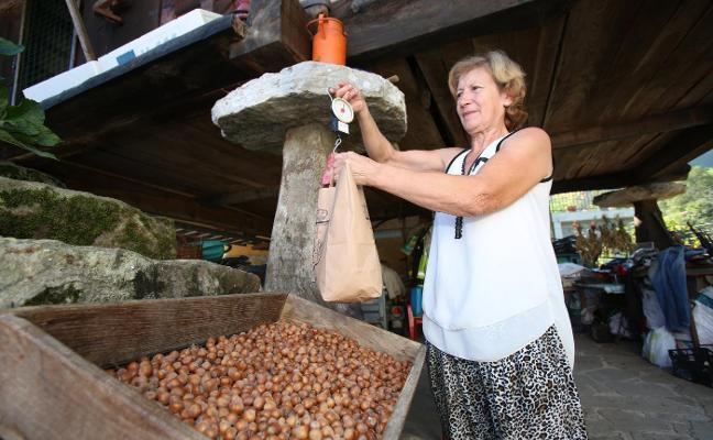 Más precio y menos cosecha para el festival de la Avellana de Piloña