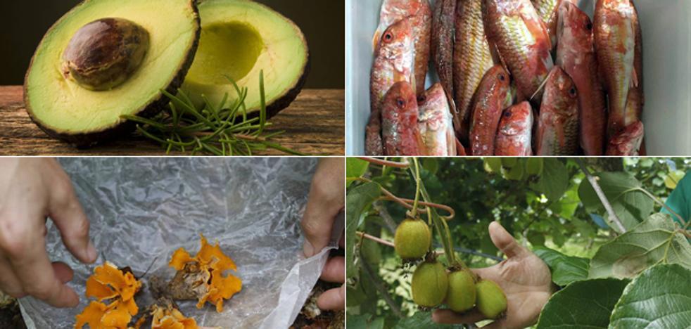 Doce productos imprescindibles para disfrutar sobre la mesa en otoño