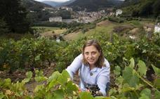 La tierra asturiana del vino, en su esplendor