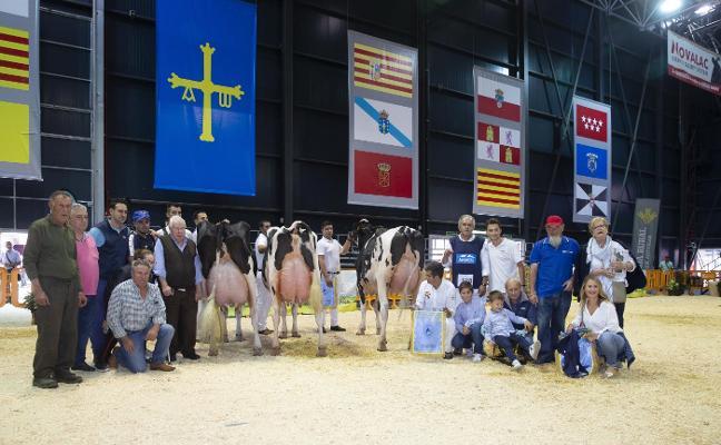Triple corona para la ganadería Badiola
