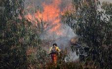 El plan de lucha contra incendios incluye medidas de autoprotección en las casas