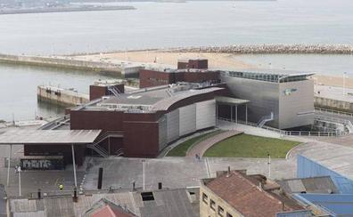 El Acuario de Gijón invertirá 2,5 millones para aumentar sus visitantes