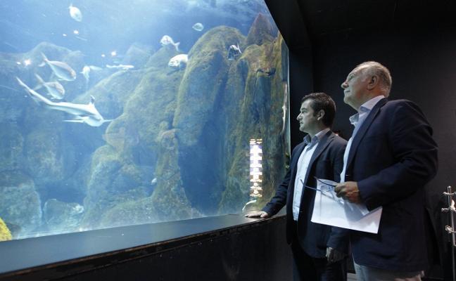 Rain Forest invertirá 2,7 millones para convertir el Acuario en «un referente»