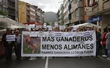 Los ganaderos protestan en Infiesto por la expansión del lobo