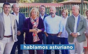 «Pero, ¿esto qué ye?». El vídeo del PP contra la cooficialidad del asturiano