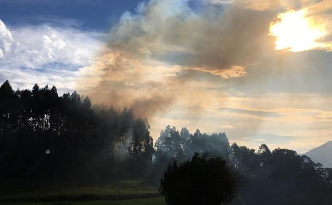 Incendio en un monte de Moriana, en Cancienes