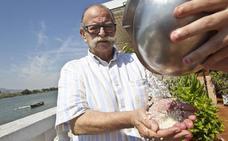 Fallece Salvador Gascón, referente de la cocina mediterránea