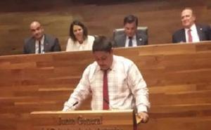 La ejemplar defensa de las abejas de un niño de Primaria que impresionó al Parlamento asturiano