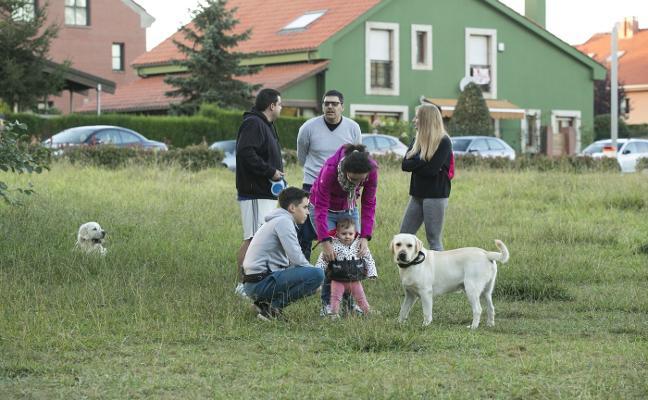 Siero acumula 24 sanciones graves o muy graves por perros sueltos desde 2007