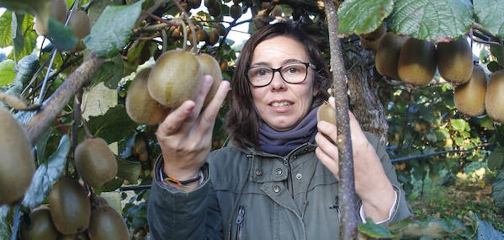 El momento del kiwi asturiano