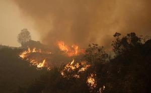 Los incendios en el occidente son «un problema de primera magnitud», dice el Principado