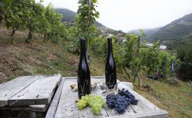 Dónde comer en Moal, Pueblo Ejemplar de Asturias 2018