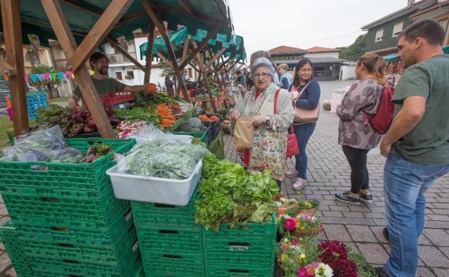 El mercado ecológico echa raíces