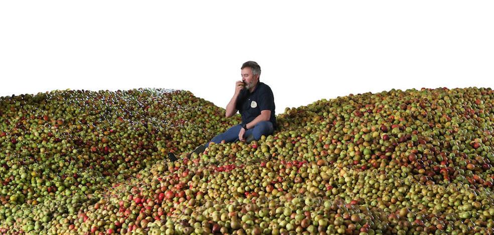 La campaña de la sidra llega sin manzana