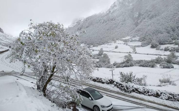 La nieve llega a Asturias