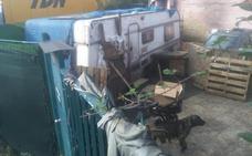 Rescatan en Tremañes una veintena de perros hacinados en una vivienda
