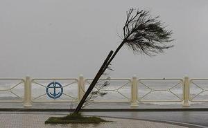 Asturias registra rachas de viento de más de 90 kilómetros por hora