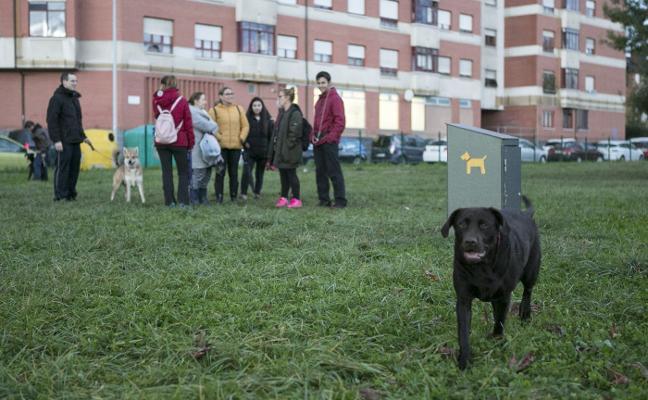 «Los dueños de perros parecemos criminales»