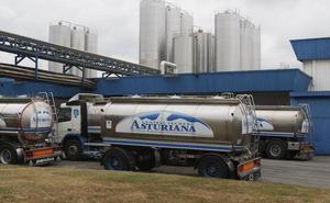 Capsa anuncia 13 despidos por la «pérdida de clientes y actividad» en el sector del yogur