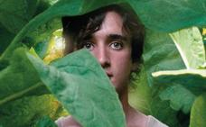 ¿Una película? Consulta la cartelera de los cines asturianos