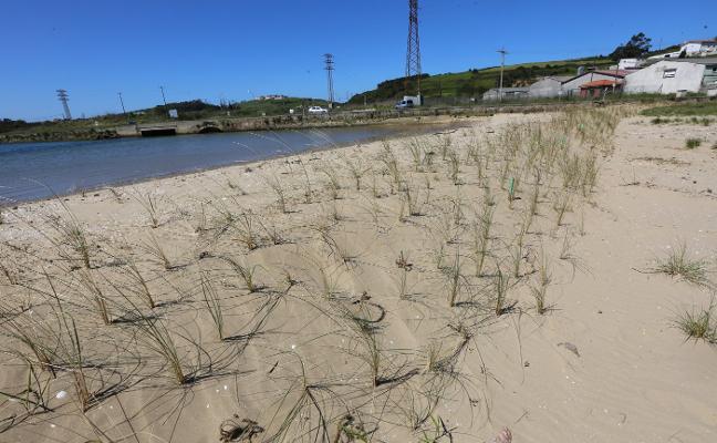 El Puerto destina 100.000 euros a recuperar y conservar el Monumento Natural de Zeluán