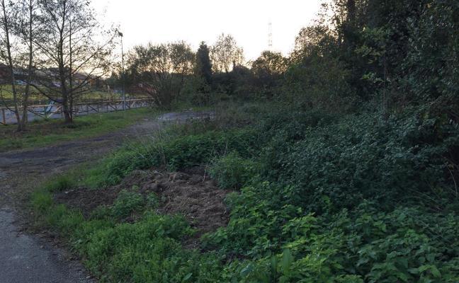 Los vecinos de Naveces urgen la limpieza del río Fontanilla