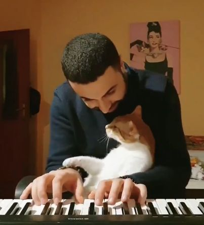 El joven que ha conquistado Twitter con su habilidad para tocar el piano y mimar a su gatito