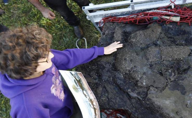 Recuperan una huella de dinosaurio terópodo de los acantilados de Tazones
