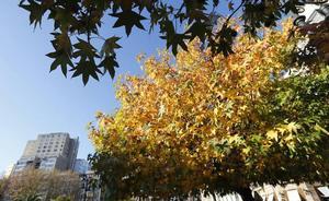 El 84 % de los asturianos cree que hay un proceso de cambio climático