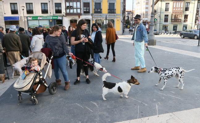 Siero «baraja ya nuevas ubicaciones» para el parque canino de la Pola