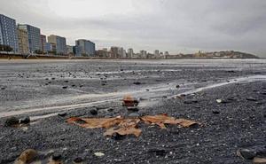 El Ayuntamiento de Gijón y el Incar estrechan su colaboración para averiguar el origen del carbón de la playa