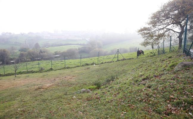 El Ayuntamiento de Gijón pone en alquiler para usos agrarios 14,5 hectáreas de suelo municipal
