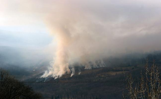 Incendio forestal en Boo, en Aller