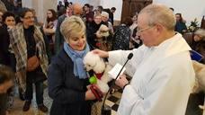 Tapia celebra la primera bendición de mascotas